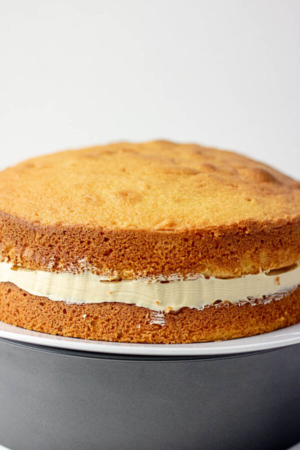 a whole vanilla sponge cake with buttercream filling placed on a plate